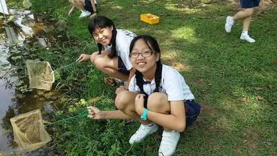 Aquatic Plants and Animals Programme at Singapore Science Centre (2014)